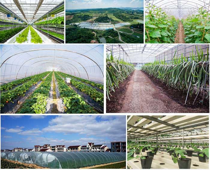 蔬菜大棚,水果大棚,花卉大棚,现代观光农业养植热泵