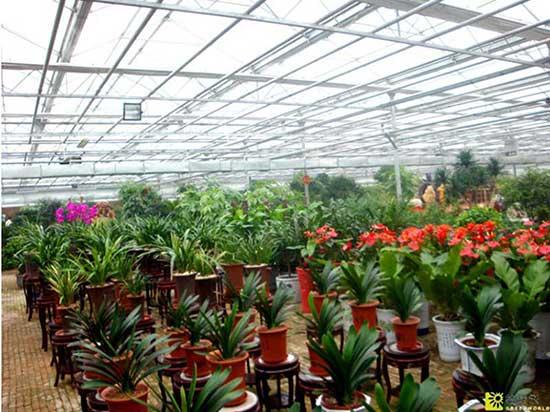农业温室大棚