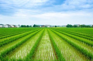 空气能在农业领域迎来发展机遇